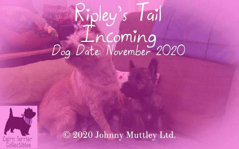 Ripley's Tail - Incoming - Cairn Terrier Collectibles
