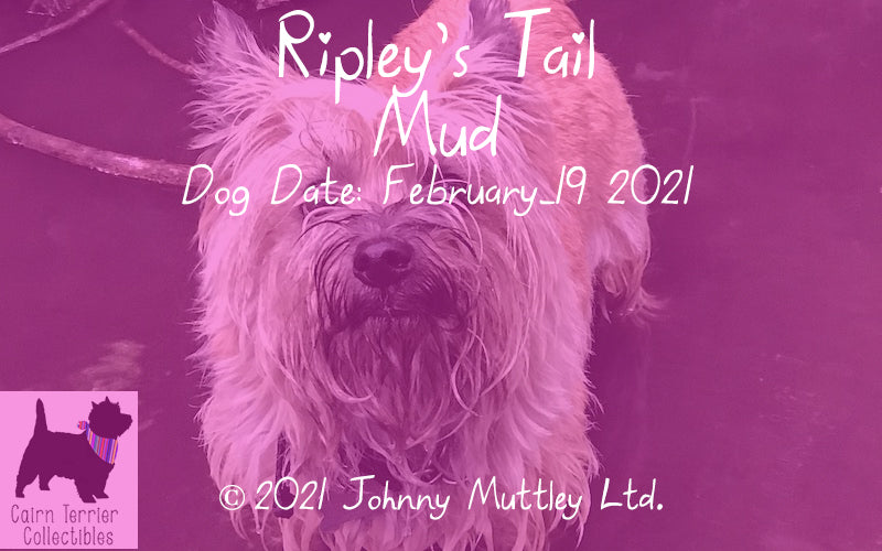 Ripley's Tail - Mud - Cairn Terrier Collectibles