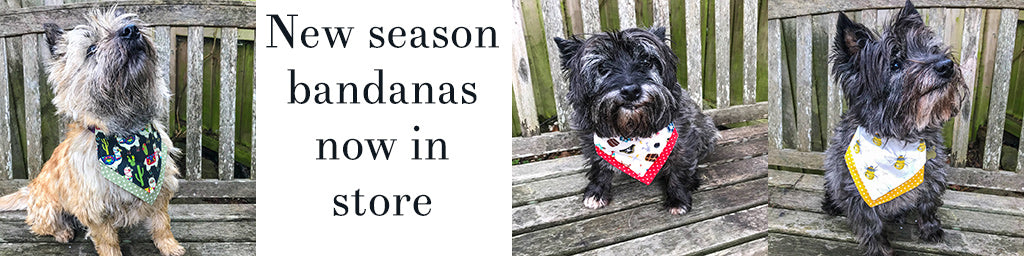 New season bandanas from Cairn Terrier Collectibles