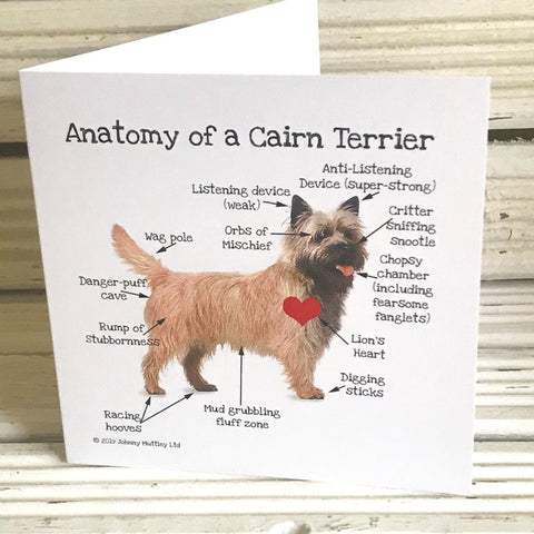 Anatomy of a Cairn Terrier greetings card