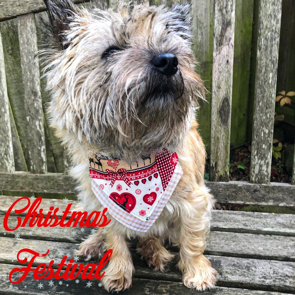 Christmas Festival Bandana - Slip-on, double layer (Medium) - Cairn Terrier Collectibles