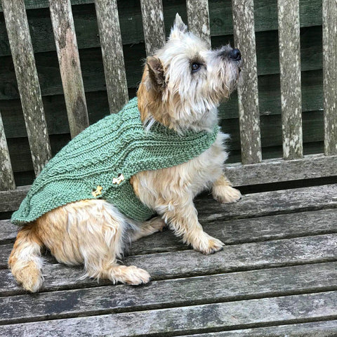 Dog Coat Sparkly Green Cabled Design (Wool)