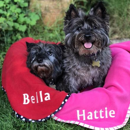 Personalised pet blanket (medium) - Cairn Terrier Collectibles