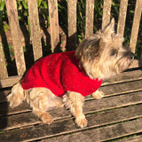 Dog Coat Motley Crew Design (Wool) - Cairn Terrier Collectibles