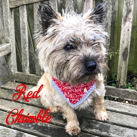 Red Chrimble Christmas Bandana - Slip-on, double layer (Medium)