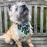 Barmy Llama Bandana - Slip-on, double layer (Medium) - Cairn Terrier Collectibles