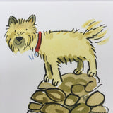 Cairn Terrier art print (Clinton Banbury) - Cairn Terrier Collectibles