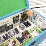 Memory Box (Blue) - Cairn Terrier Collectibles