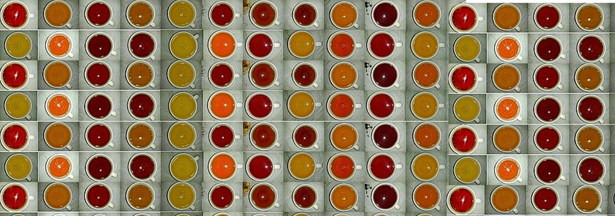 Montage of overhead view of different teas in cups