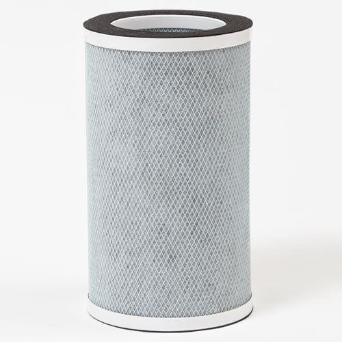 QuietPure Home Replacement Carbon VOC Filter Cartridge by Aerus