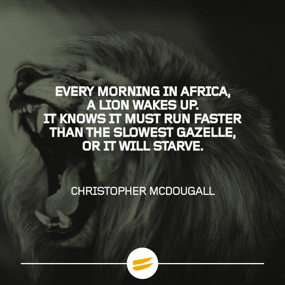 Every morning in Africa, a lion wakes up. It knows it must run faster than the slowest gazelle, or it will starve