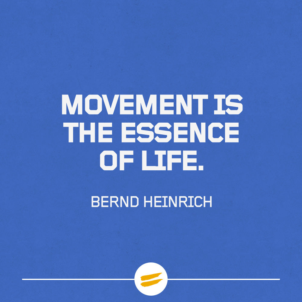 Movement is the essence of life
