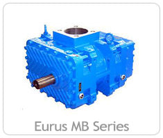 Eurus MB Series PD Blowers