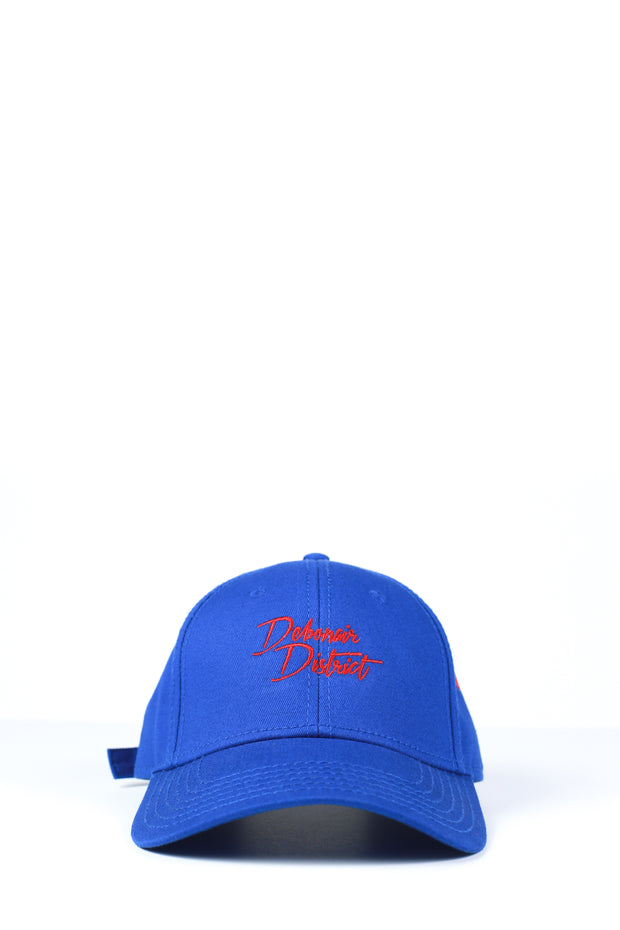 Enthusiast Curved Brim (Blue)