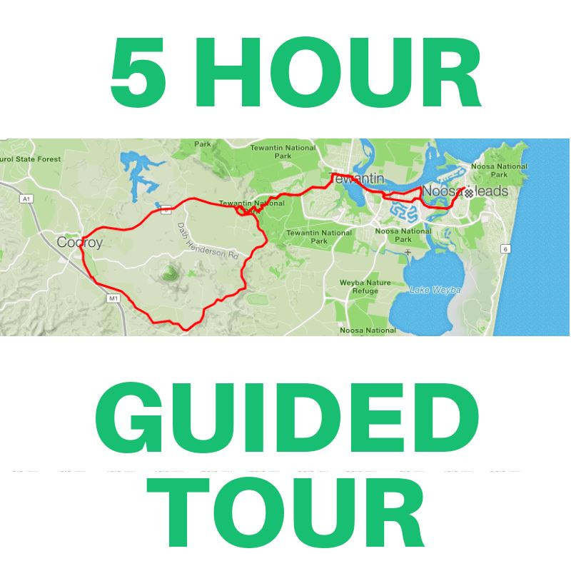 5 Hour Guided Road Bike Tour / Noosa
