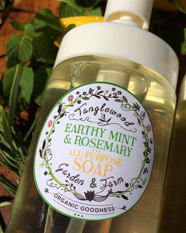 Liquid Soap~ Amazing All-Purpose Organic 200ml glass pump jar in 5 fantastic scents!