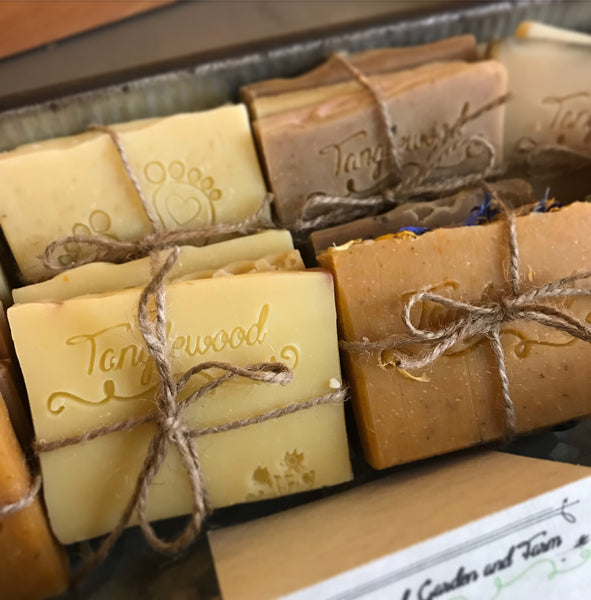 Soap Samplers! Variety pack of 3 mini Tanglewood organic body soaps