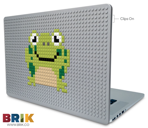 Frog Laptop Case