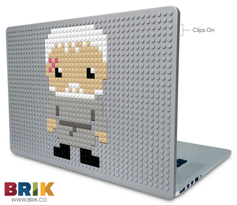 Hodor Laptop Case