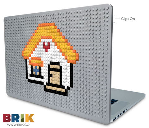 House Laptop Case