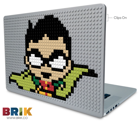 Robin Laptop Case