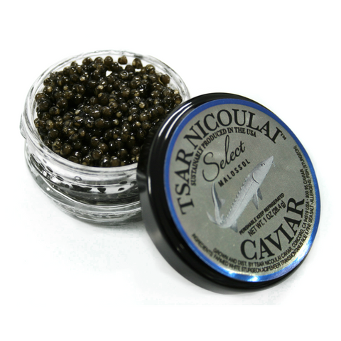 Caviar - American White Sturgeon - Select / Flag Ship • Creamy • Generous