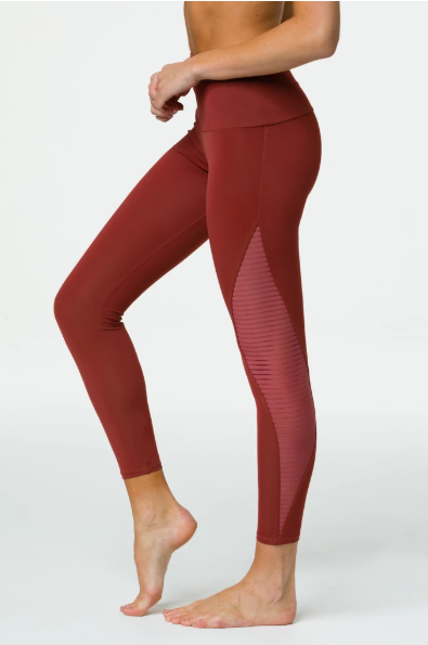 Sheer Me Roar -  Legging - Now in Ginger!