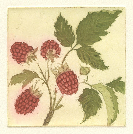Raspberries (Test Print)