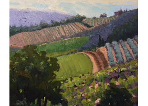 Vineyards, Radda in Chianti