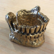Old jaw bone ring
