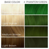 Arctic Fox Hair Color Color swatches chart showing cruelty-free semi-permanent hair dye on light blonde medium blonde dark brown hair phantom green