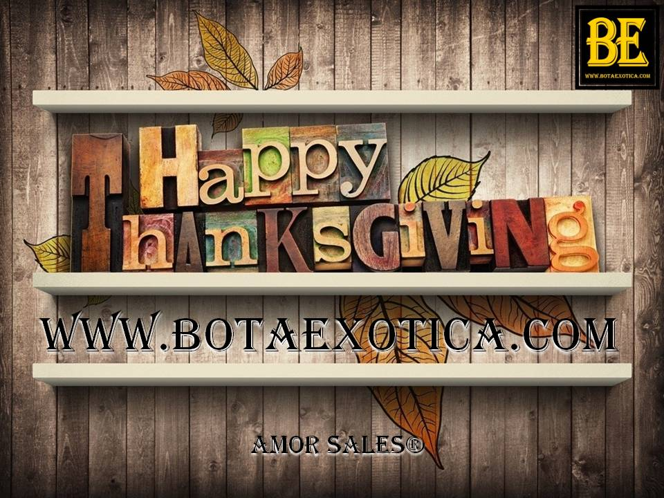 Happy Thanksgiving Day 2015