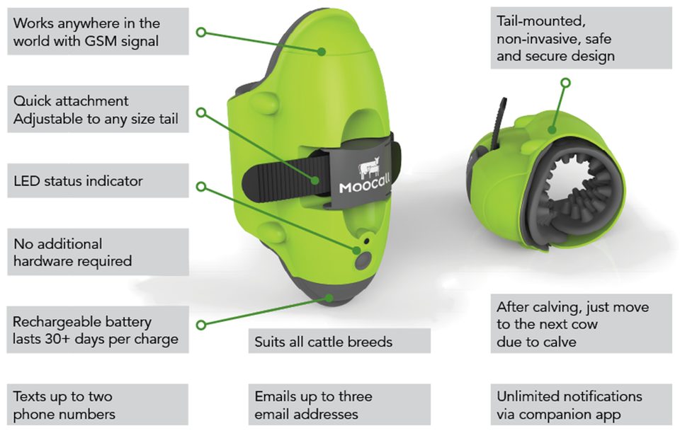 How Moocall Technology Works: