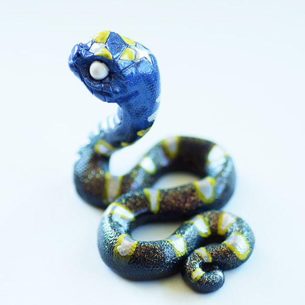 Blue and Yellow Ghost-Eye Snake