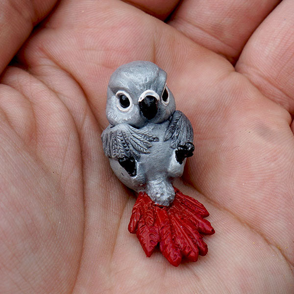 African Grey Parrot GumiPoni