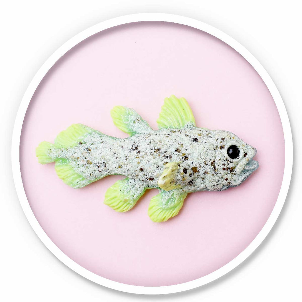 Coelacanth Magnet • Lime green