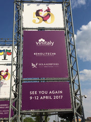 VinItaly 50 - Day 4, the Carnival is Over