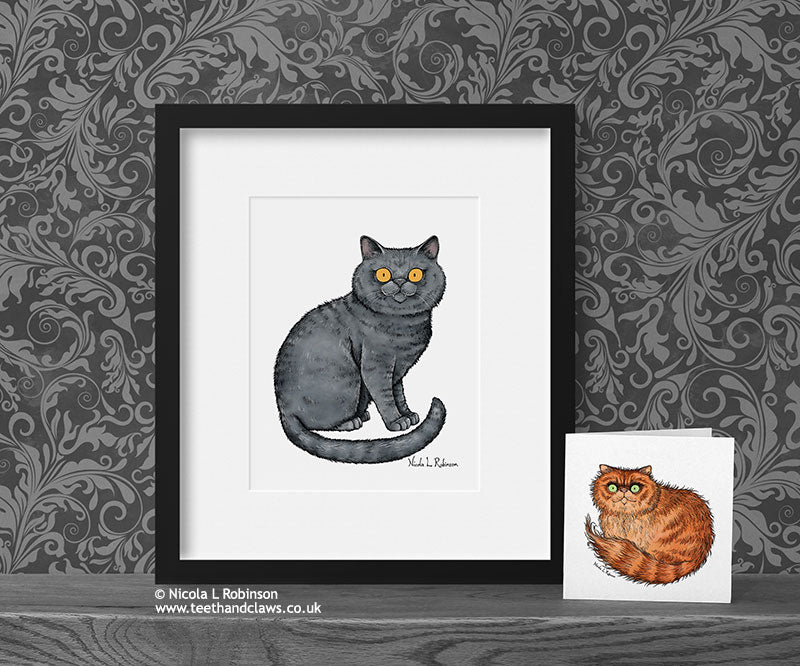 British Shorthair Cat Art Print - Cat Decor Gift © Nicola L Robinson | Teeth and Claws www.teethandclaws.co.uk