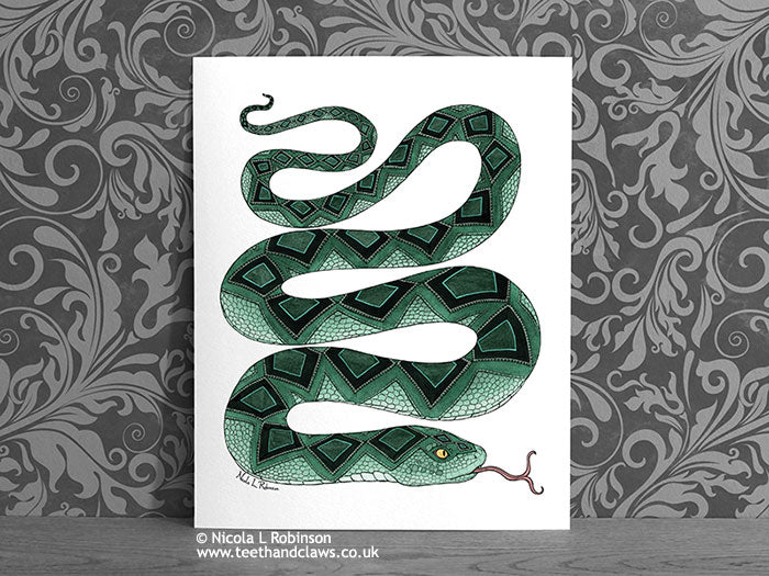 Snake Art Print - Snake Decor Gift © Nicola L Robinson | Teeth and Claws www.teethandclaws.co.uk