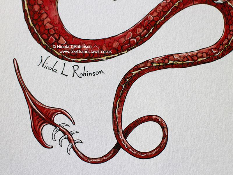 Red Flying Dragon Art Print © Nicola L Robinson | Teeth and Claws