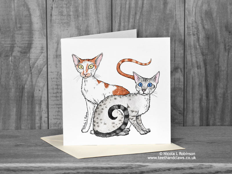 Two cats greeting card - Freya and Renegade 'Katzenworld' © Nicola L Robinson | Teeth and Claws