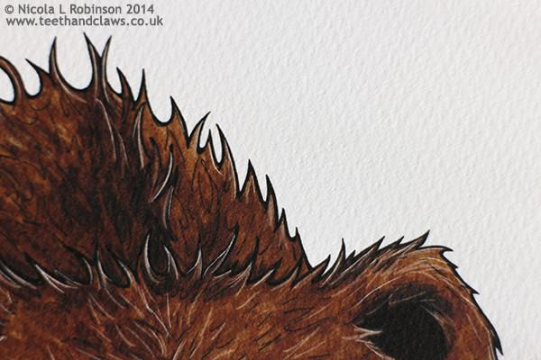 © Nicola L Robinson 2015 www.teethandclaws.co.uk Grizzly Bear Art Print Nursery Decor