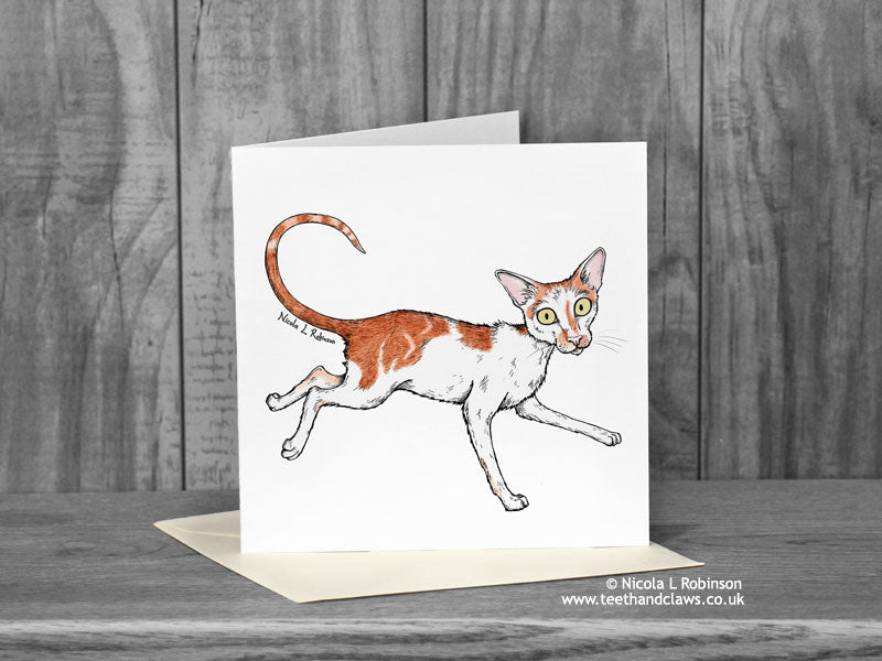 Ginger and White Cat Greeting Card - Renegade 'Katzenworld' © Nicola L Robinson | Teeth and Claws