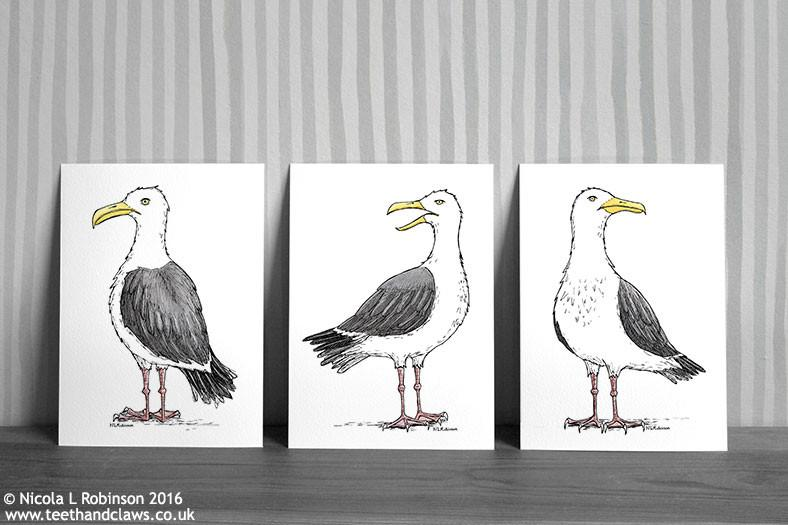 Seagull Art Prints - Set of 3 © Nicola L Robinson | Teeth and Claws
