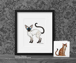 Siamese Cat Art Print - Cat Decor Gift © Nicola L Robinson | Teeth and Claws www.teethandclaws.co.uk