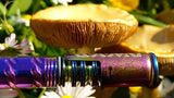Mushroom and Azurium DynaVap 2020 M Fall Colors Dry Herb Vape NZ