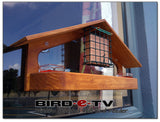 Bird-E-TV Window Mounted Bird Feeder - Helenskinz Online NZ - 1