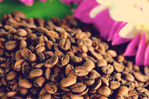 SHOP 100% Kona Coffee - Whole Bean