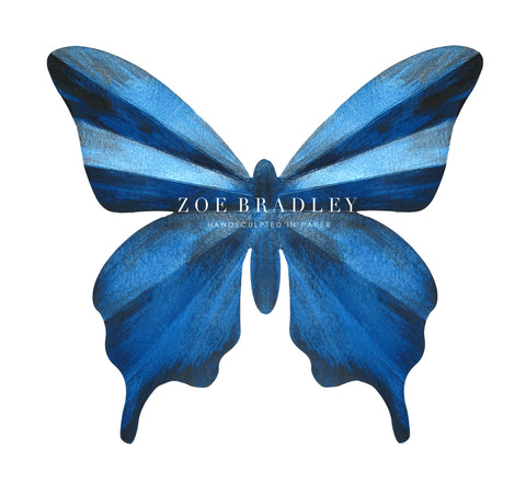 Hand Painted butterfly print designed by Zoe Bradley