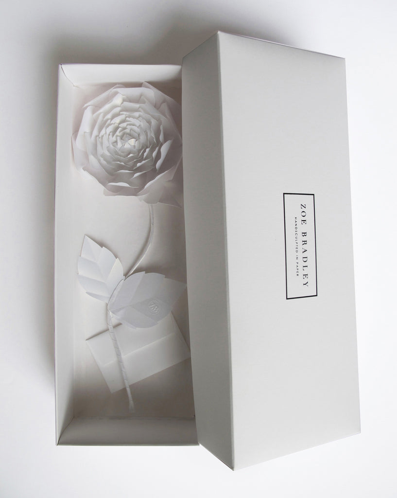 "<font face=""Didot"" color=""black"" >Everlasting White Paper Peony</font>"